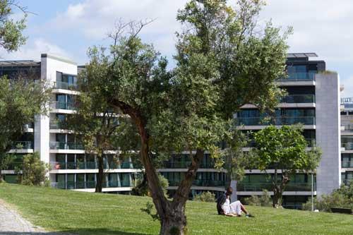 Jardim Amália Rodrigues